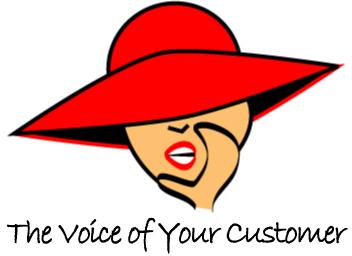 VOYC Logo – Color